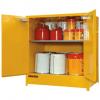 DPS250 Heavy Duty Dangerous Goods Storage Cabinets open