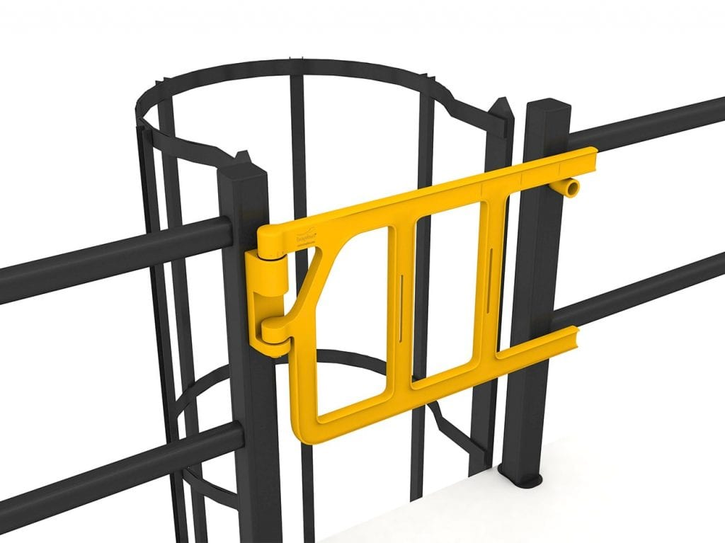 Double axes gate on ladder